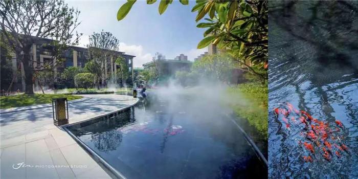 龙光城:500万成熟大城 临深惠州大亚湾西区最值得购买的楼盘