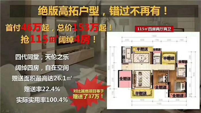 惠州惠阳星河盛世,临深500米+白云新城区+地铁口300米+名校环绕