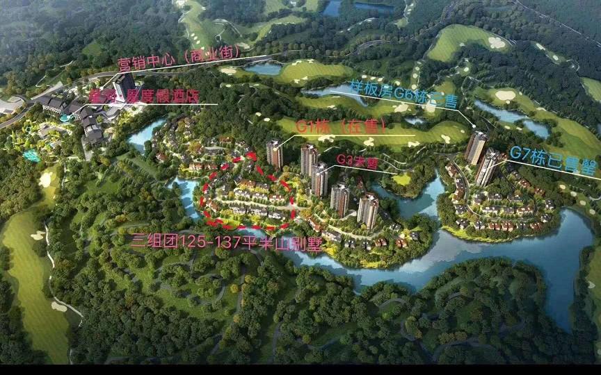 惠州类独栋双拼精装别墅 性价比最高的楼盘星河山海半岛307万花园200平