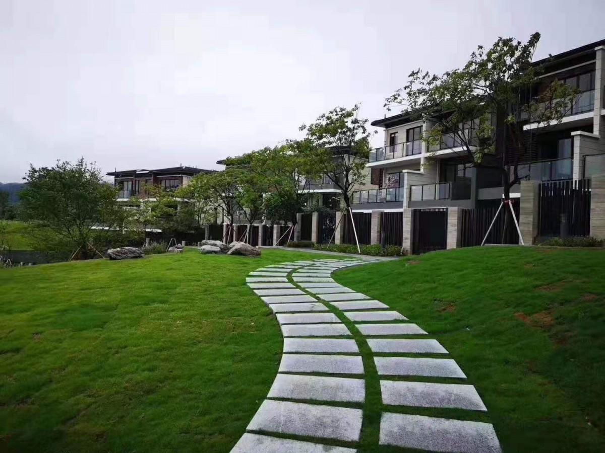 星河山海半岛二期二组团别墅和高层住宅热售中!高层面积67、80、98平两至三房别墅面积:115—125平米5—6房带精装修,送电梯!送花园